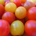 fruit_tomato_price