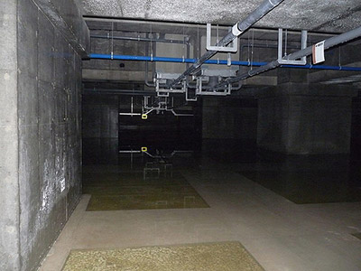 toyosu_market_basement