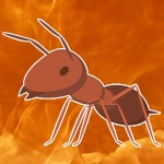 fire_ant_favorite_weak